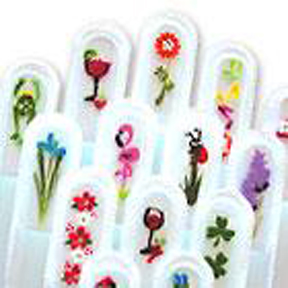 Parrot Handpainted Nail File Set - The Terry Janis Collection